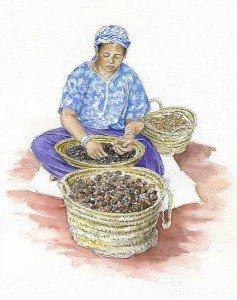 huile-argane-fabrication-ecossage-des-noix